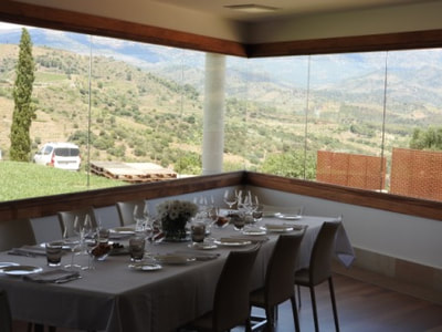 View from Alvaro Palacios' dining room at the winery